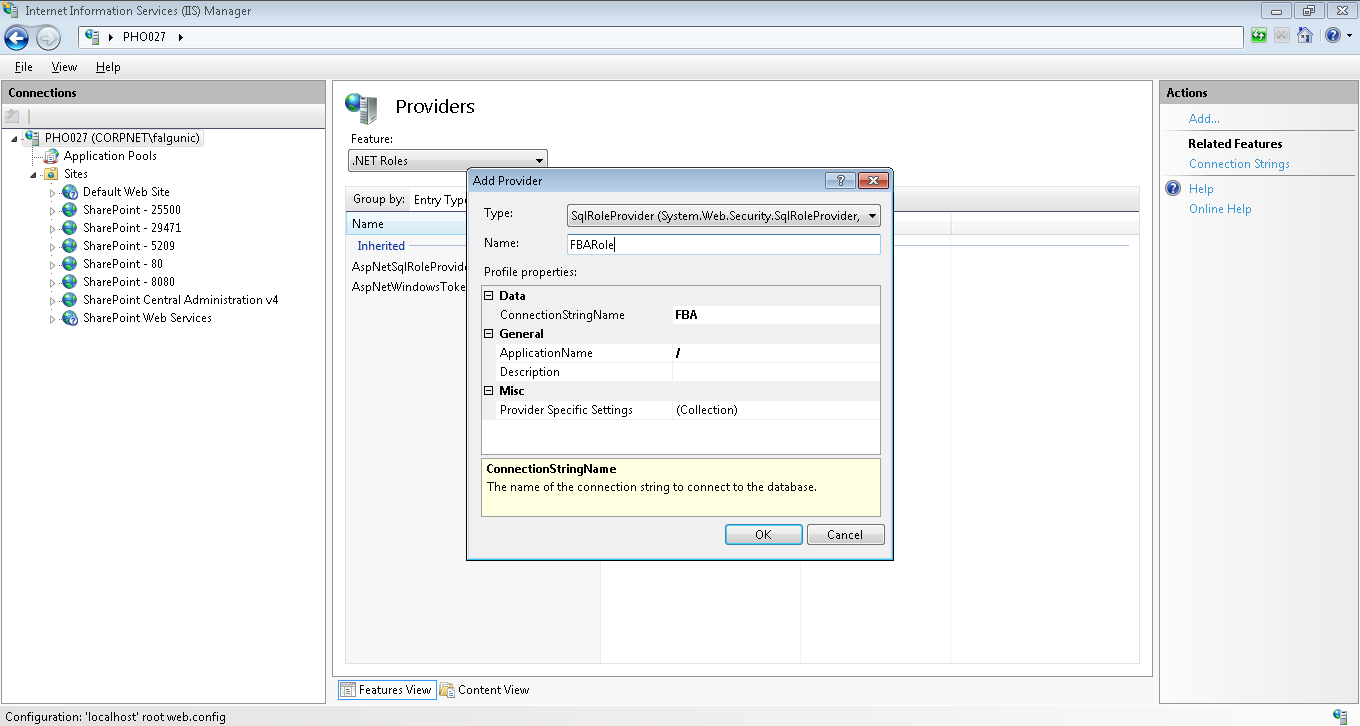Add new FBA Role Provider using IIS