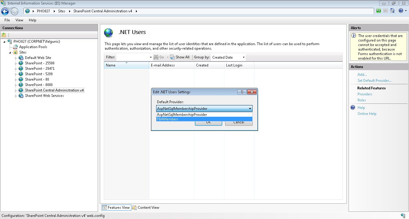Set default .NET User provider from IIS